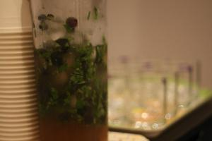 Virgin Blueberry Mojito: Demerara Sugar, Lime Juice, Mint, Blueberries, Tonic Water, Ice